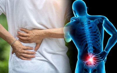 Low Back Pain- Do Not Fear!